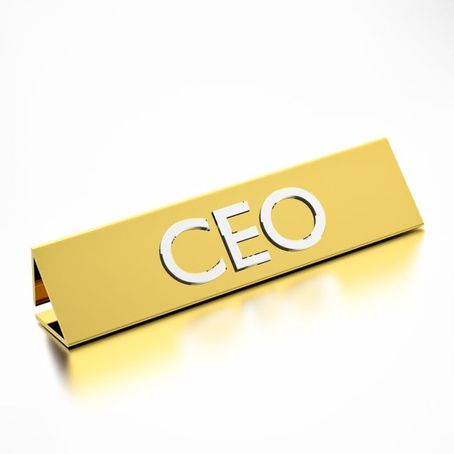 Washington-Based Litigator Becomes Hogan Lovells' New CEO